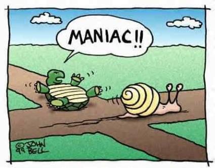 mental snails funny snail